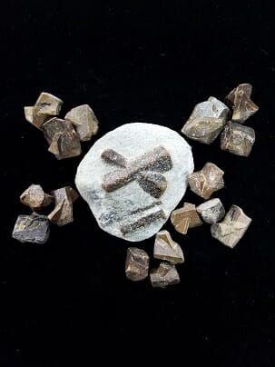 Staurolite-crystals in Naples FL at Altered Elements Store